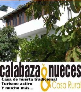 cabecera home1